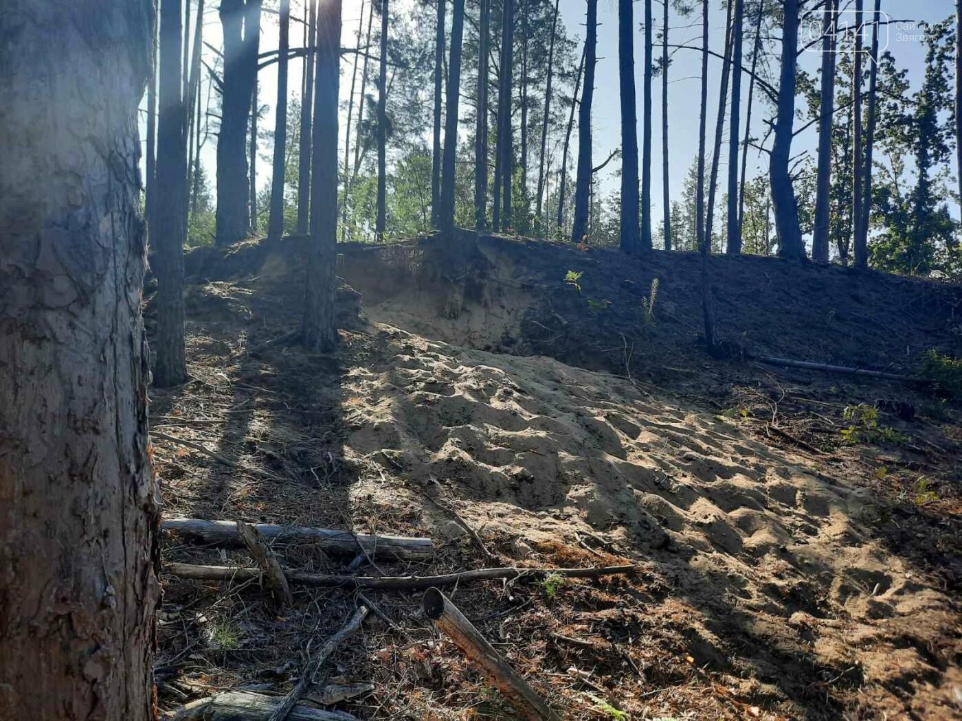 Залишки давнього поселення бронзової доби виявили на Новоград-Волинщині , фото-2
