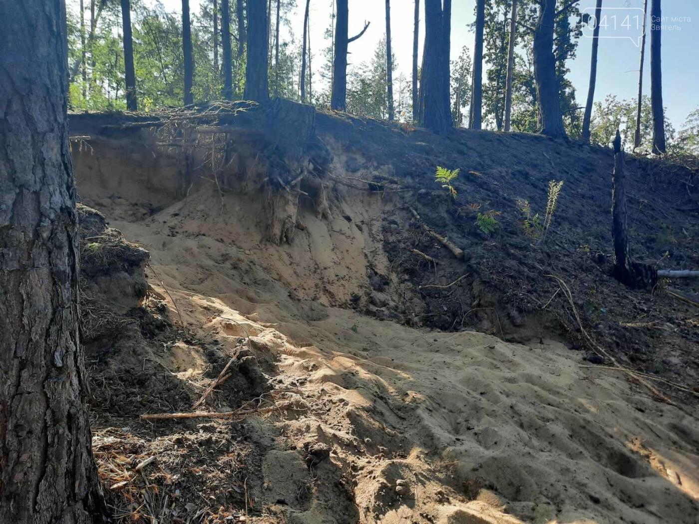 Залишки давнього поселення бронзової доби виявили на Новоград-Волинщині , фото-3