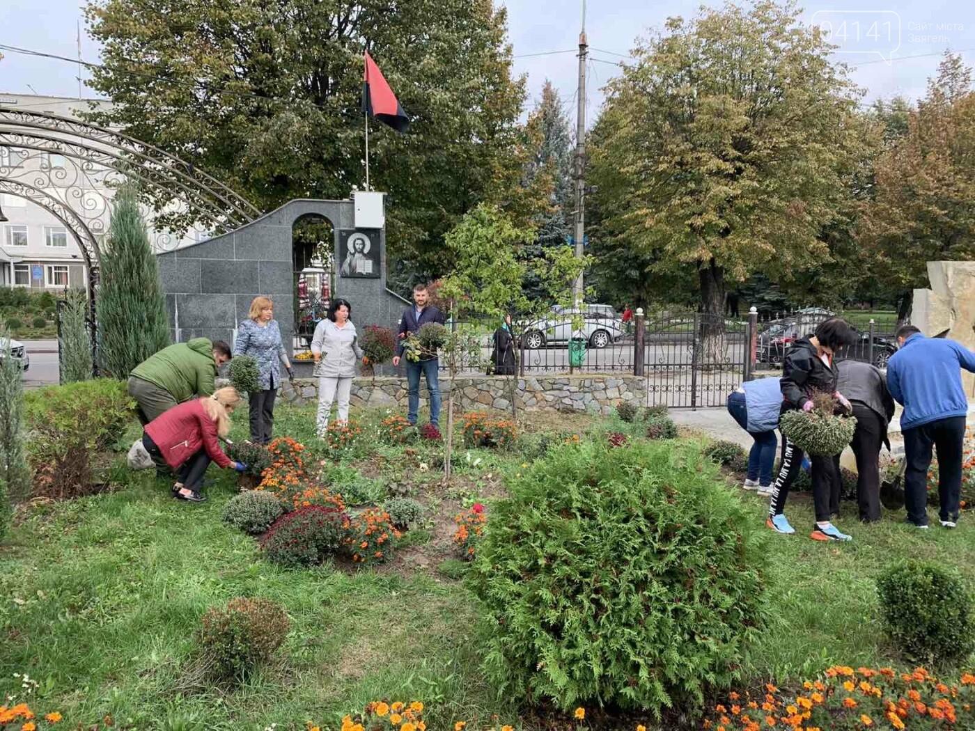 Від слів до дії: У Новограді висадили квіти представники команди «Європейської Солідарності», фото-7