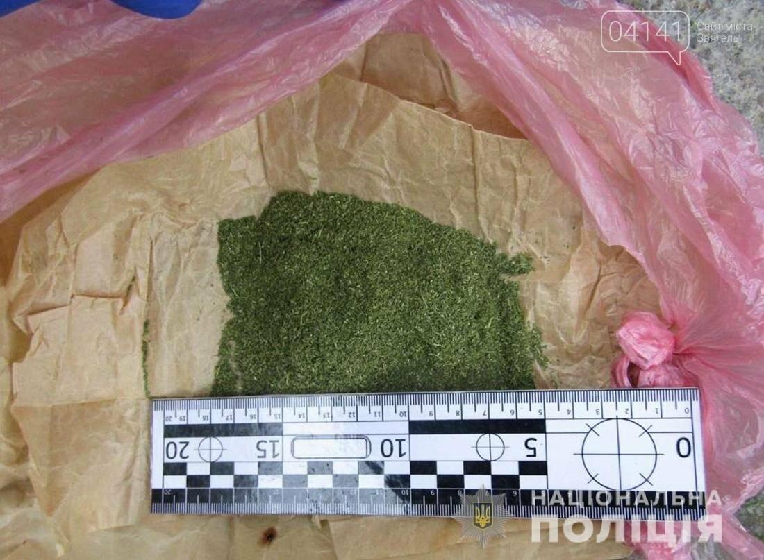 Перехожого з наркотиками затримали поліцейські в Новограді-Волинському, фото-1