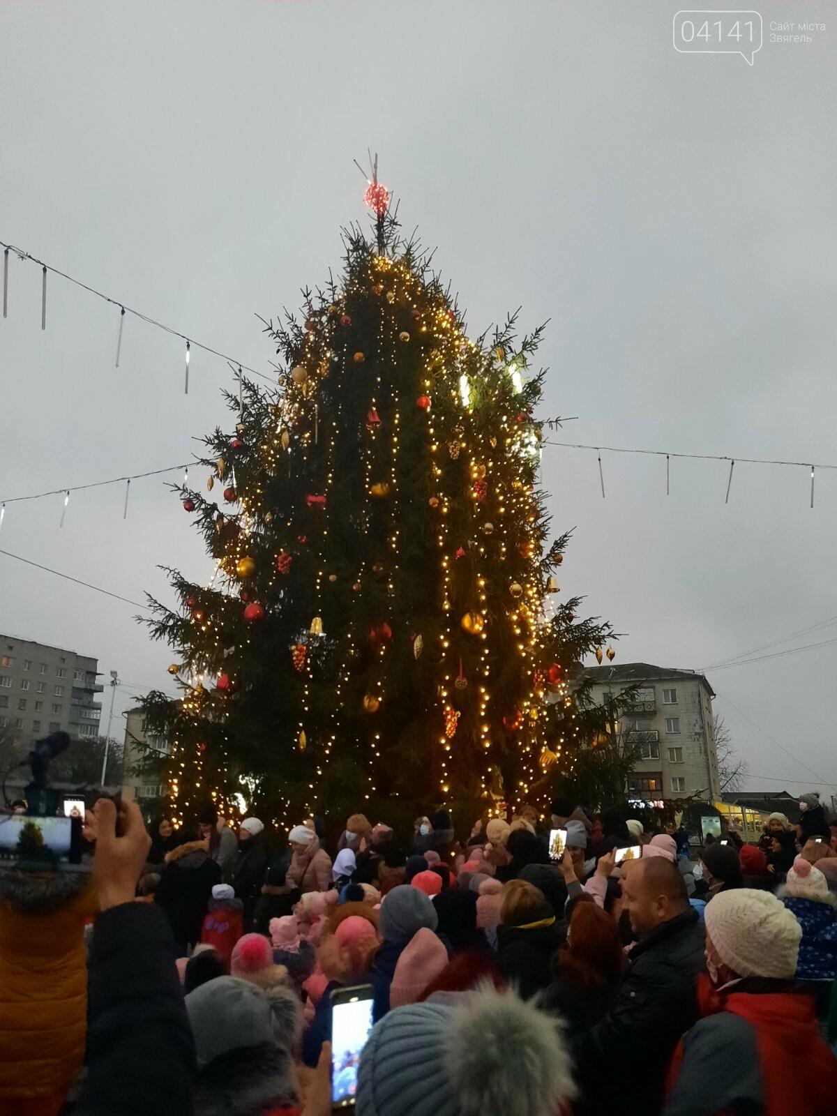У Новограді-Волинському відкрили головну ялинку: Відео, фото як це було, фото-5