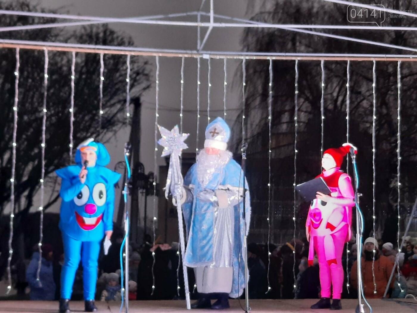 У Новограді-Волинському відкрили головну ялинку: Відео, фото як це було, фото-1