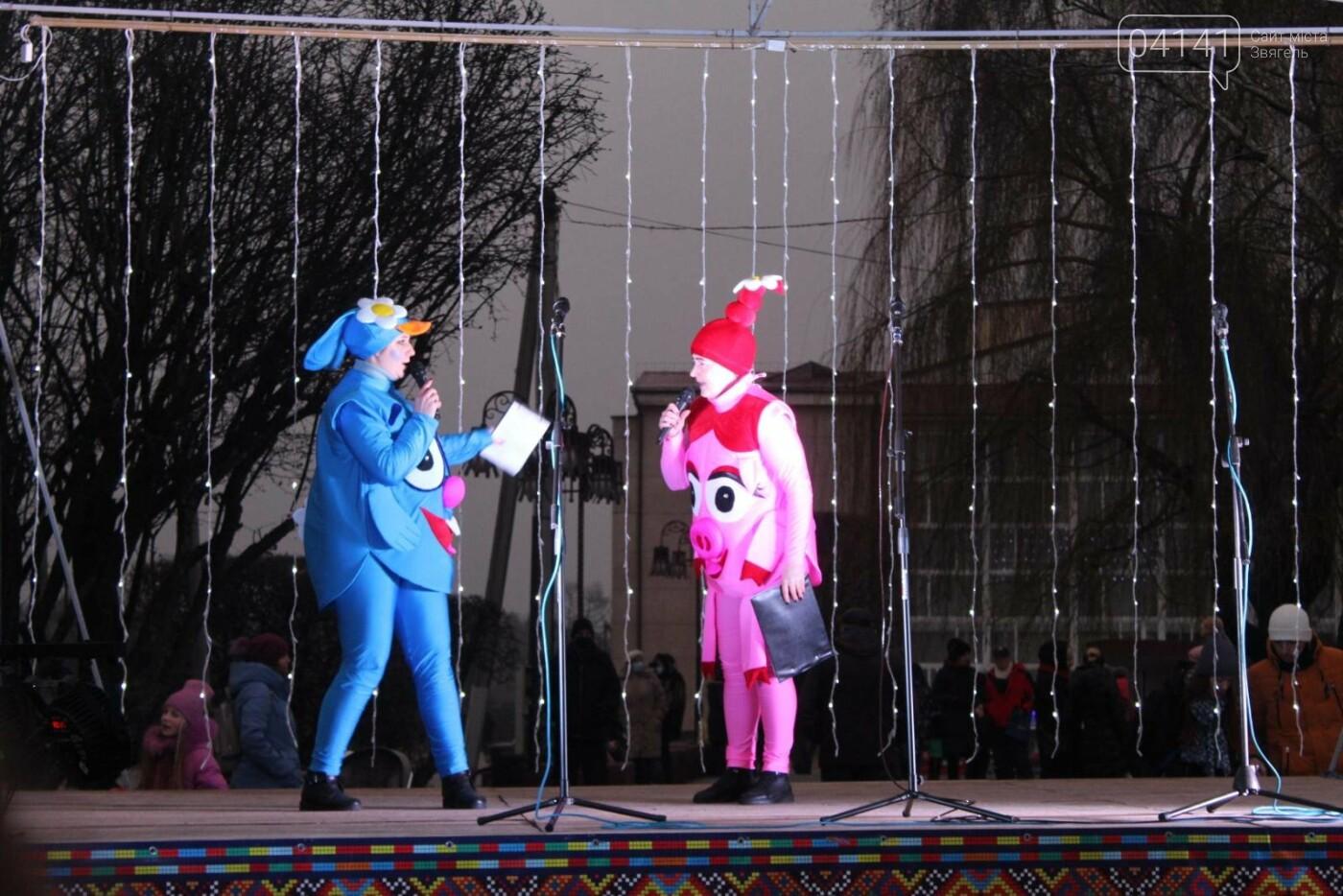 У Новограді-Волинському відкрили головну ялинку: Відео, фото як це було, фото-4