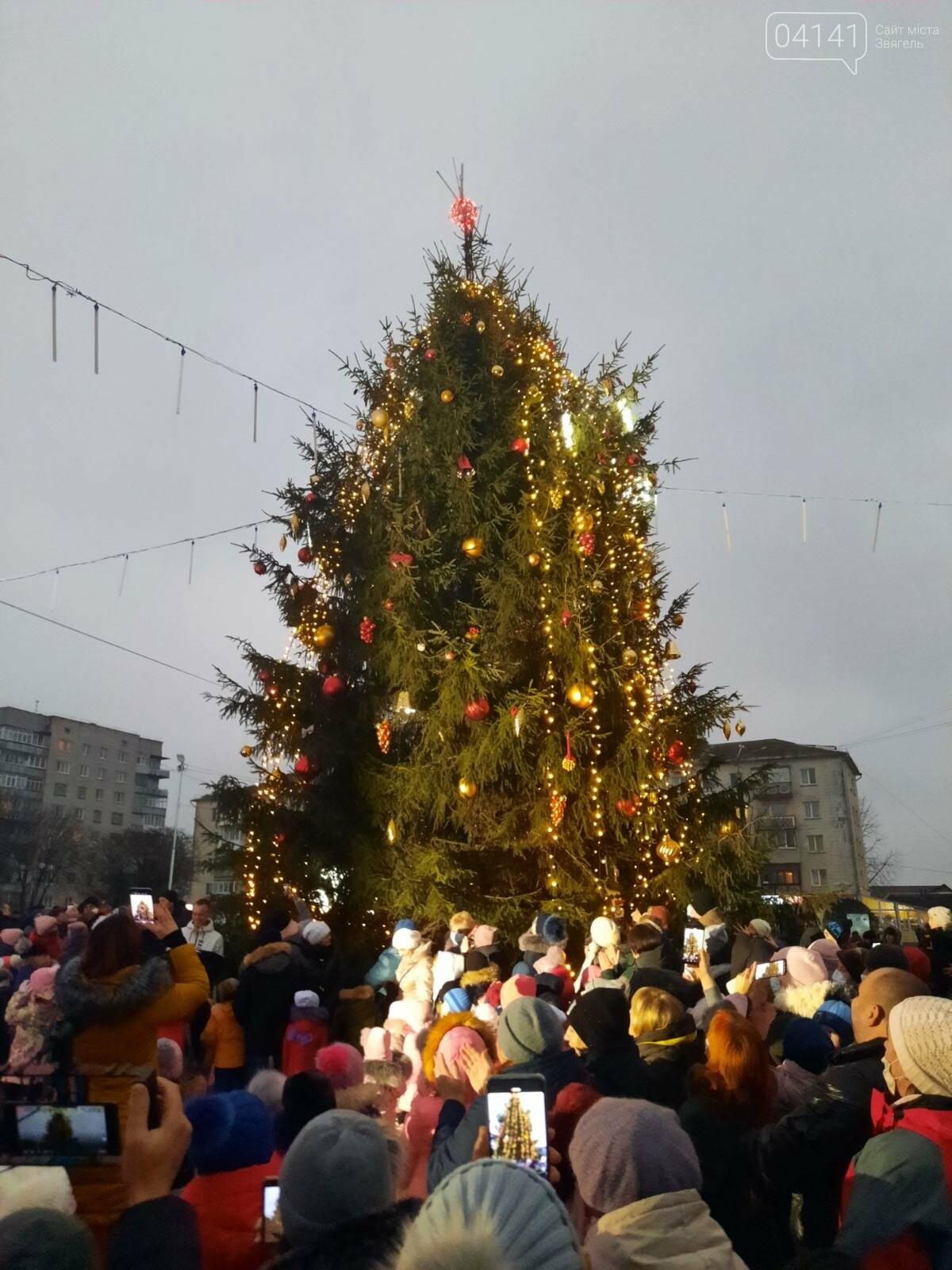 У Новограді-Волинському відкрили головну ялинку: Відео, фото як це було, фото-6