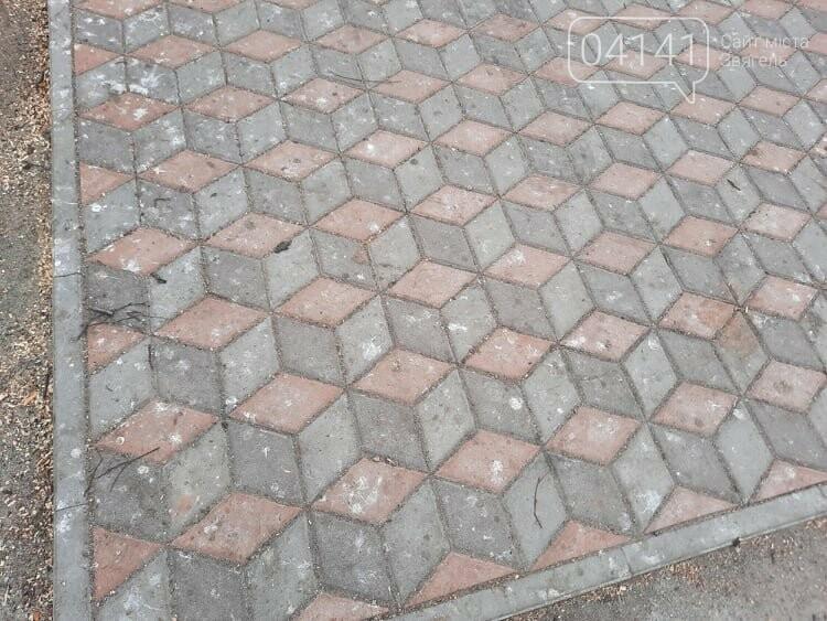 Загиджений парк воронами: Проблема яку місцева влада Новограда воліє не помічати, фото-3