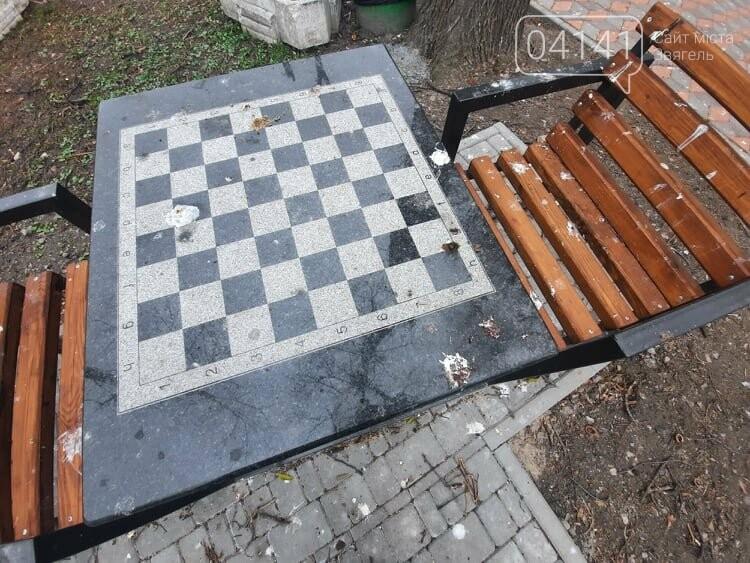 Загиджений парк воронами: Проблема яку місцева влада Новограда воліє не помічати, фото-2