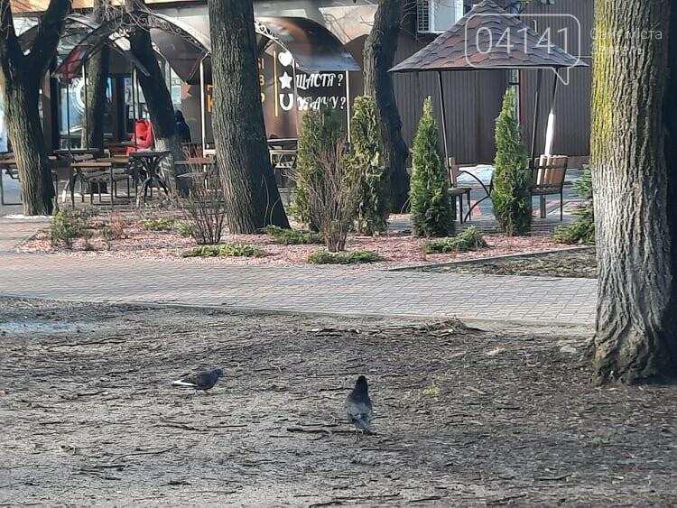 Загиджений парк воронами: Проблема яку місцева влада Новограда воліє не помічати, фото-5