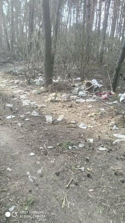 """Не новоград-волинці, а справжні """"задрипанці"""": на Кривоноса захарастили сміттям ліс, фото-2"""