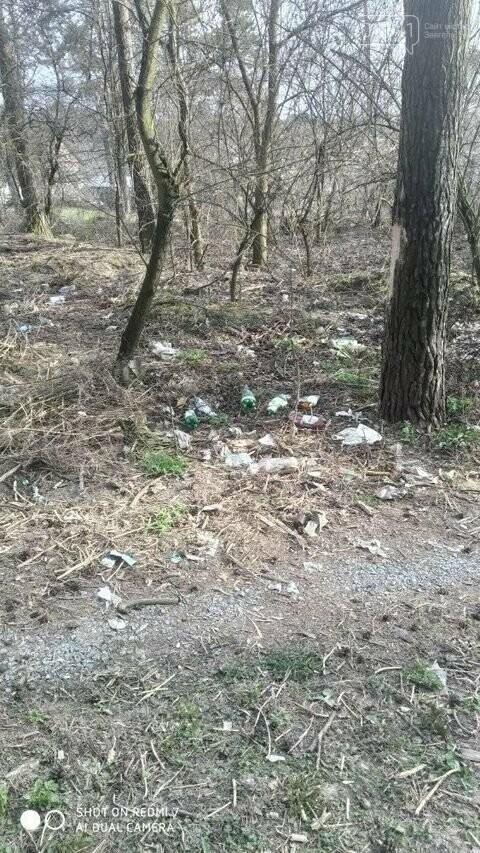 """Не новоград-волинці, а справжні """"задрипанці"""": на Кривоноса захарастили сміттям ліс, фото-3"""