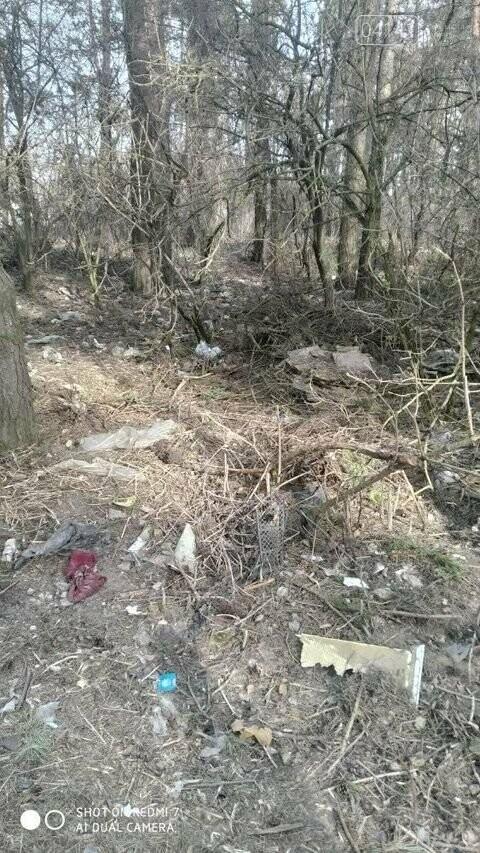 """Не новоград-волинці, а справжні """"задрипанці"""": на Кривоноса захарастили сміттям ліс, фото-4"""