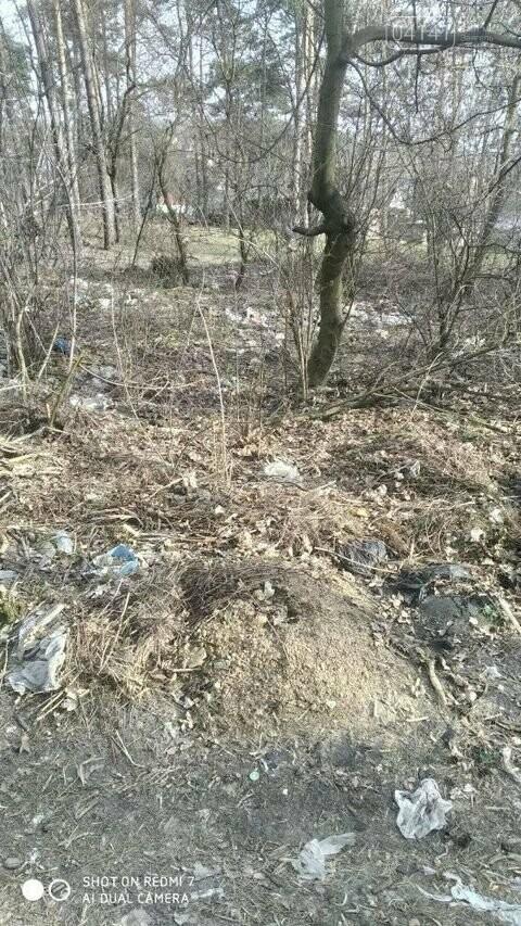 """Не новоград-волинці, а справжні """"задрипанці"""": на Кривоноса захарастили сміттям ліс, фото-1"""
