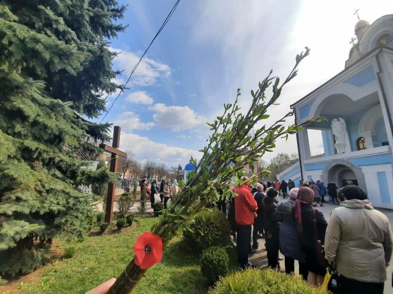 Як у Новограді-Волинському святкують Вербну неділю (ФОТО, ВІДЕО), фото-2