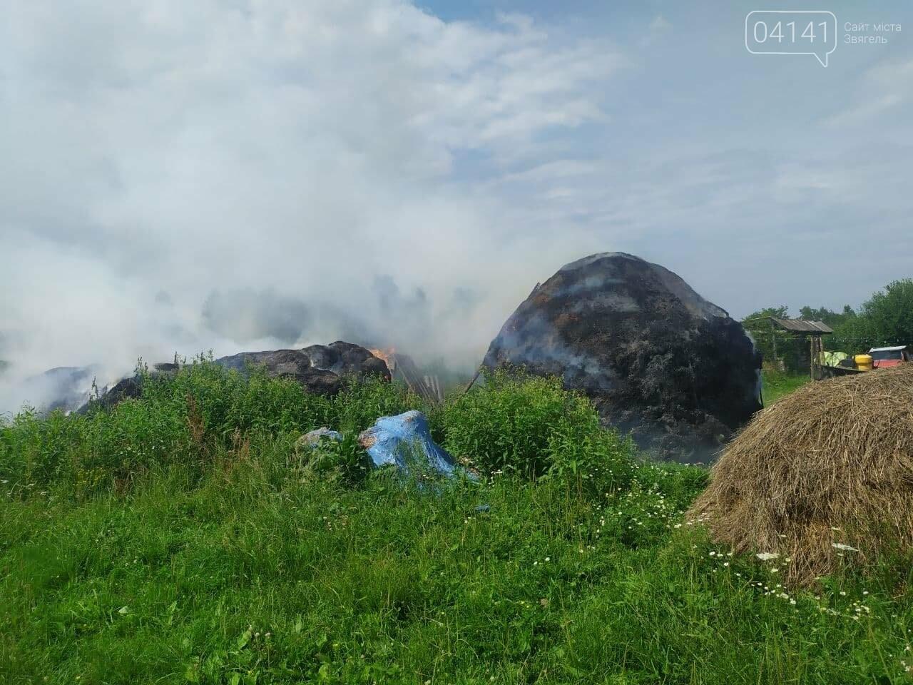 На Новоград-Волинщині внаслідок дитячих пустощів сталася пожежа, фото-3