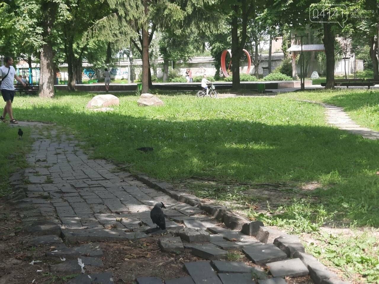 Краще навіть у Чорнобилі: Парк культури та відпочинку в Новограді-Волинському (ФОТО), фото-16