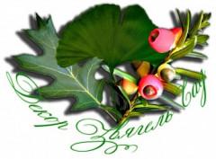 Логотип - Декор 3вягель Сад, Новоград, озеленення, благоустрій, та ланшафтний дизайн Новоград-Волинський