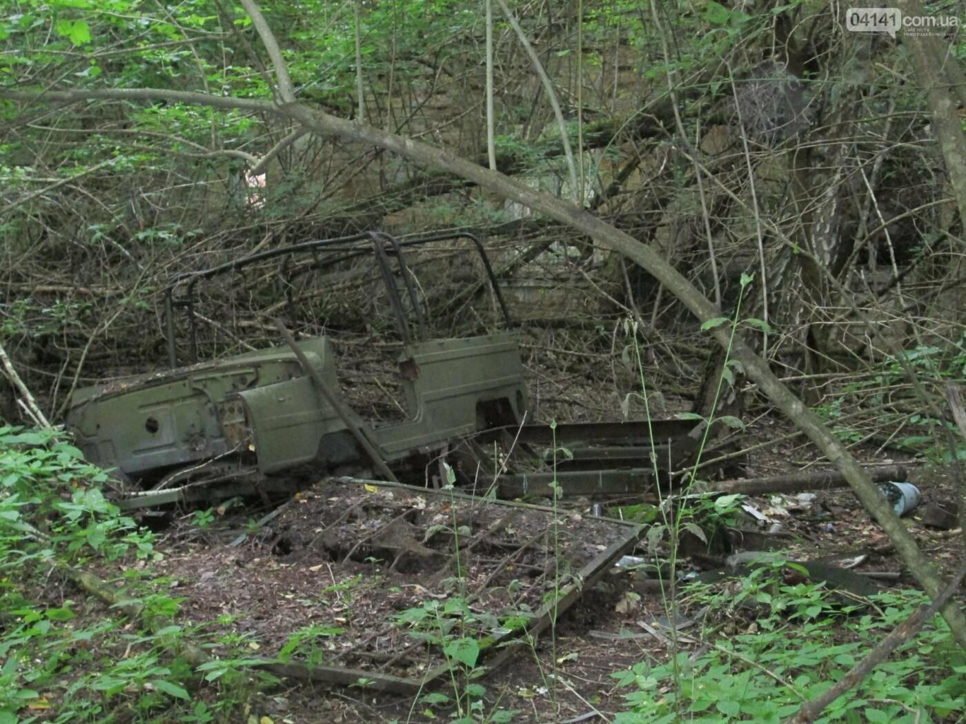 Річниця аварії на ЧАЕС: Ручний лис Семен та інші факти про трагедію, відео від сайту 04141.com.ua з зони відчуження, фото-4