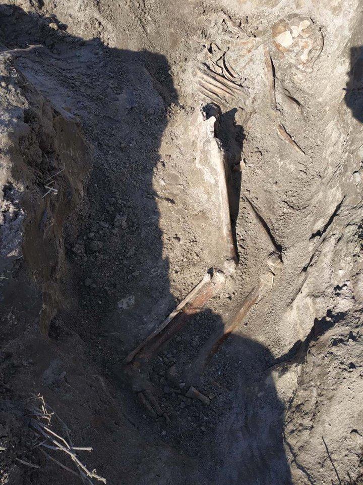 Новоград-волинські пошуківці знайшли останки загиблого солдата, фото-1