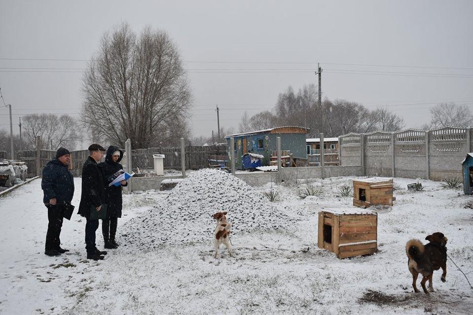 У Новограді-Волинському перевірили умови утримання безпритульних тварин громадською організацією «Захист тварин «Оберіг», фото-3