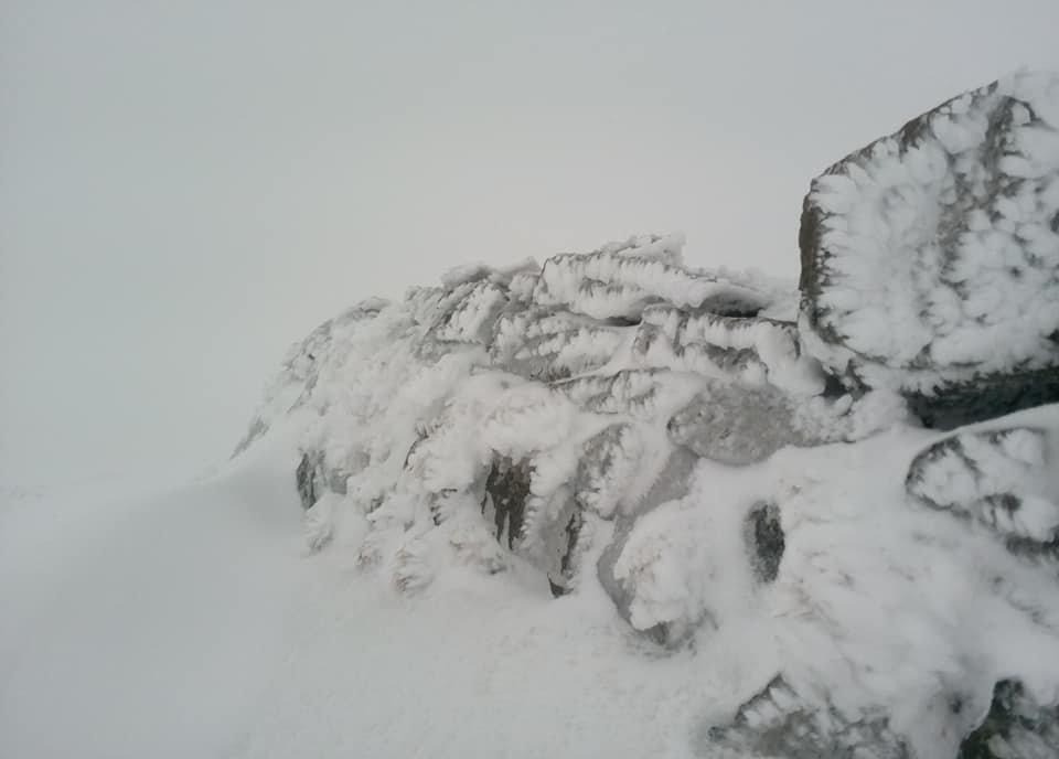 В перший день літа у Карпатах падає сніг (ФОТО), фото-2
