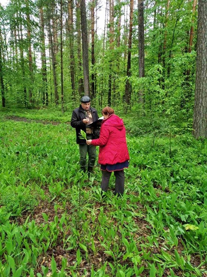 Екологічна інспекція закликає припинити збір, і торгівлю червонокнижних та раньоквітучих рослин, фото-3
