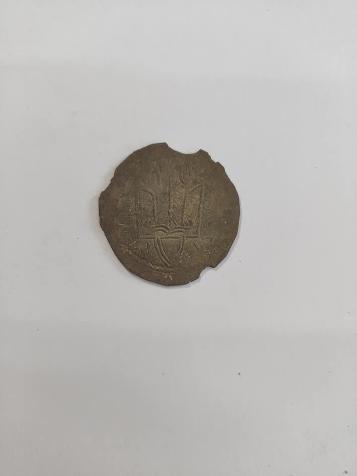 Найбільший скарб монет княжої доби знайдено на Новоград-Волинщині, фото-4