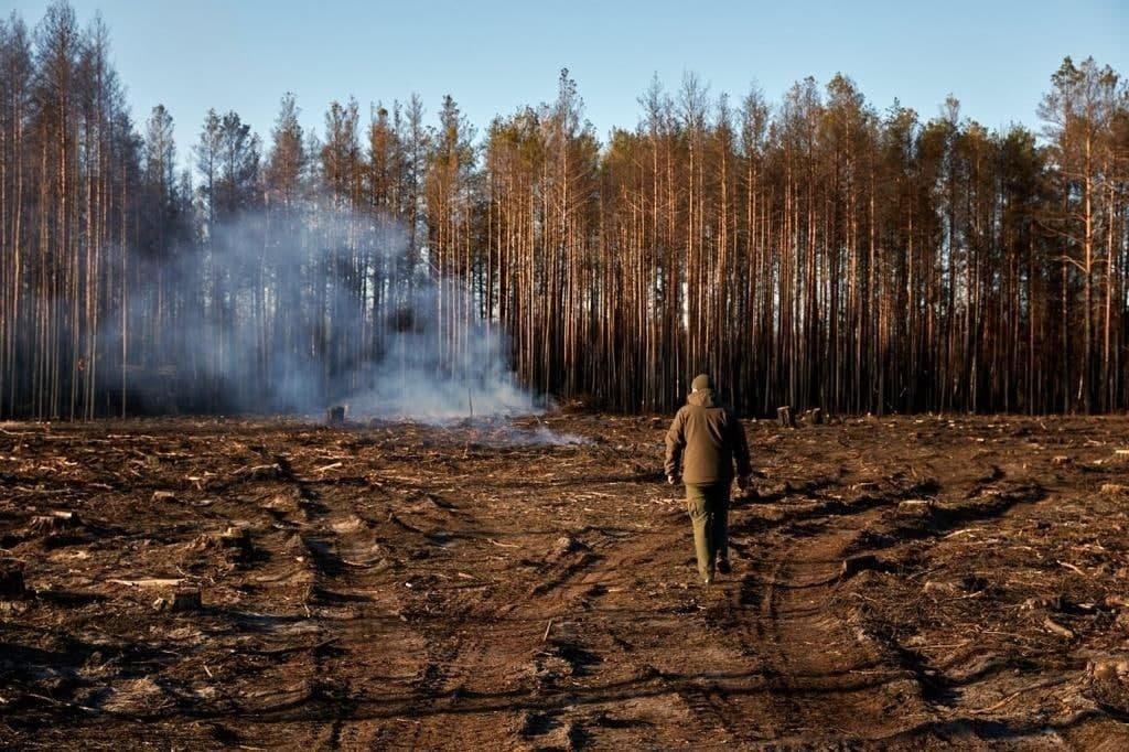 Річниця лісових пожеж: які висновки зроблено, фото-3