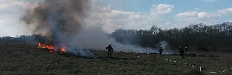 У Баранівці лісівники та рятувальники вчаться ліквідовувати пожежі